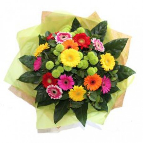 Wondrous Gerbera Bouquet
