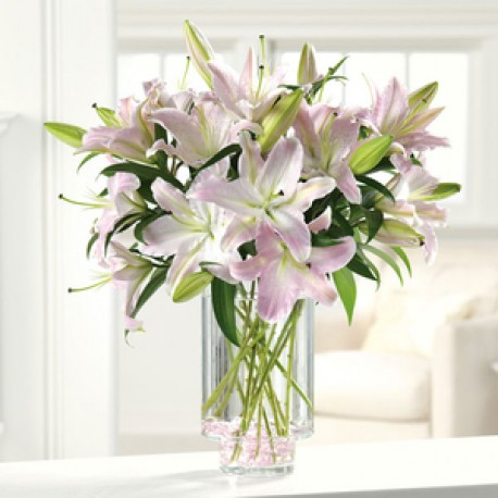 Striking Oriental Lily Vase
