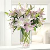 Striking Oriental Lily Vase
