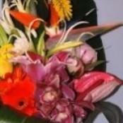 Exotic Vase